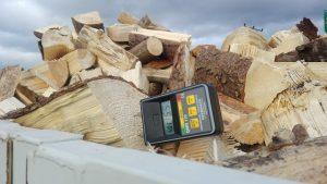 Grafika-vysušené dřevo