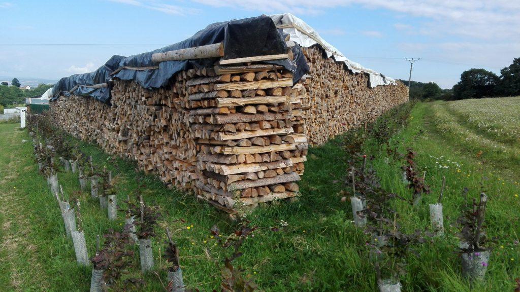 Grafika-naštípané dřevo